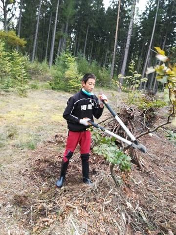 Ukliďme les